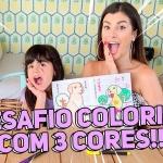 DESAFIO: Colorindo um livro com 3 cores com a minha sobrinha